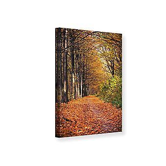 Lærred Print løvskov i efteråret lys