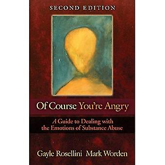 Of Course You're Angry: Guide to Dealing with the Emotions of Substance Abuse