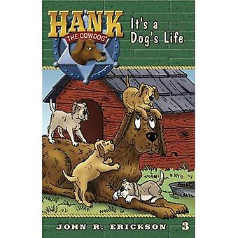 It's a Dog's Life (Hank the Cowdog