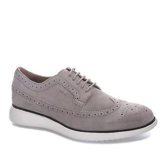 Mens Geox Mens Winfred Shoes in Taupe