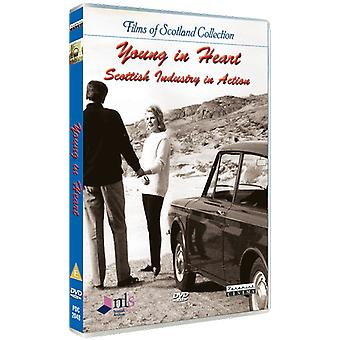 Young in Heart DVD