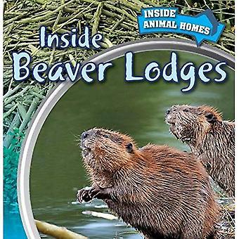 Inside Beaver Lodges (Inside Animal Homes)