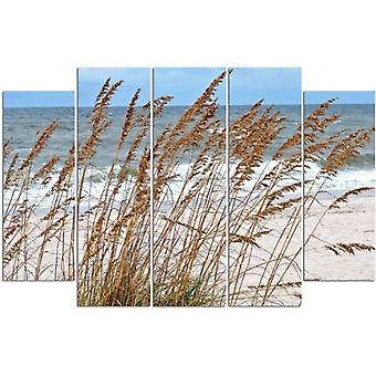 Five Part Picture On Canvas, Pentaptych, Type B, Sea Grass