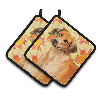Carolines Treasures  BB9937PTHD Rhodesian Ridgeback Fall Pair of Pot Holders