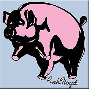 Pink Floyd Pig square steel fridge magnet (cv)