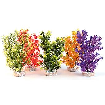 Sydeco Coloured Plants Jungle Medium 28cm (Pack of 6)