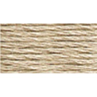 DMC 6-Strand Embroidery Cotton 8.7yd-Very Light Beige Brown