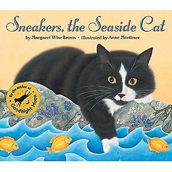 Tênis do gato à beira-mar