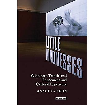 Little Madnesses: Winnicott, Transitional Phenomena & Cultural Experience (International Library of Cultural Studies)