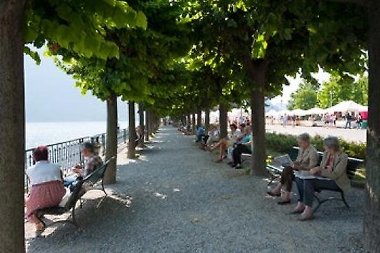 People sitting on benches among trees at lakeshore Lake Como Cernobbio Lombardy  Poster Print by Panoramic Images (36 x 24)