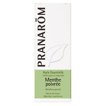 Pranarom Ätherisches Pfefferminzöl 5ml Bio.