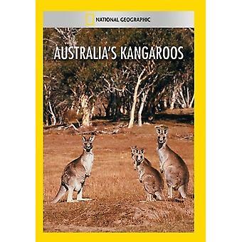 Kangury Australias [DVD] USA import