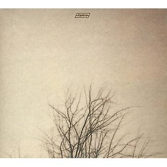 Benoit Pioulard - varade [CD] USA import