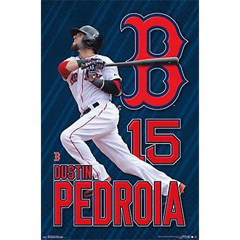 Boston Red Sox - Dustin Pedroia 2015 Poster Poster Print