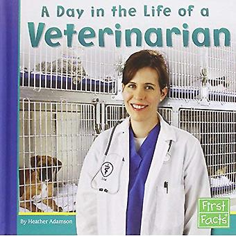 A Day in the Life of a Veterinarian (First Facts: Community Helpers at Work)
