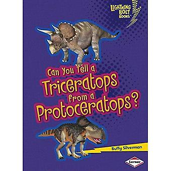 Voitteko kertoa Triceratops Protoceratops?