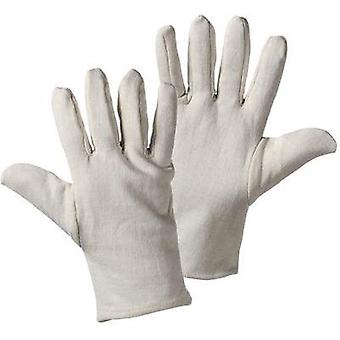 Griffy 1005 JERSEY Glove 100% wool-tricot Size (gloves): 10, XL