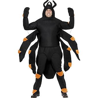 Spider Costume, One Size