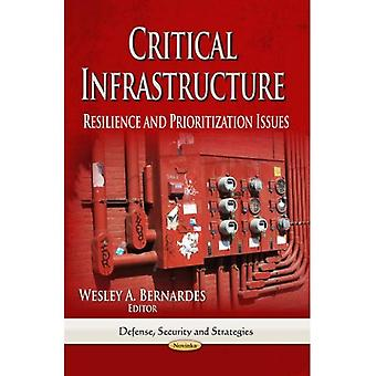 Critical Infrastructure (Defense, Security and Strategies)