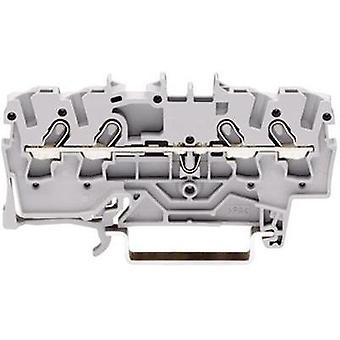 Continuity 3.50 mm Pull spring Configuration: L Grey WAGO 2000-1401 1 pc(s)