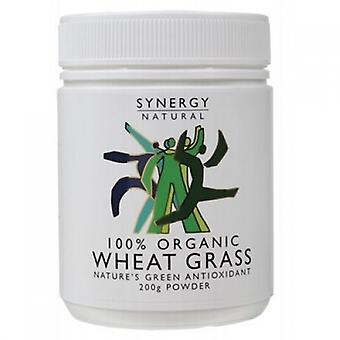 Synergy Natural, Organic WheatGrass Leaf Powder, 200g