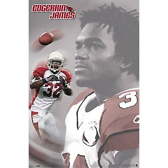 Arizona Cardinals - Edgerin James affisch affisch Skriv