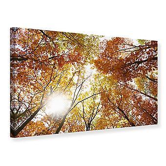 Impressão de lona iluminada árvores de outono