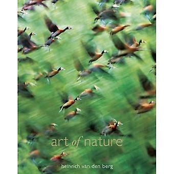 Art of Nature