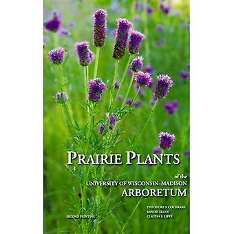 Des plantes de prairie de l'Arboretum de l'Université du Wisconsin-Madison: y compris les prêles, fougères, joncs, carex, graminées, arbustes, vignes, mauvaises herbes et fleurs sauvages