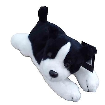 Dowman cintura Buddy Border Collie