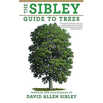 I Sibley Guide till träd