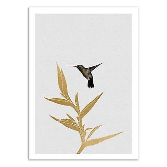 Art-Poster - Hummingbird and flower - Orara Studio 50 x 70 cm