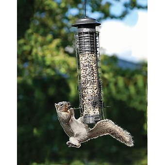 Dragonfly Squirrel-Resistant Tube Bird Feeder Stylish