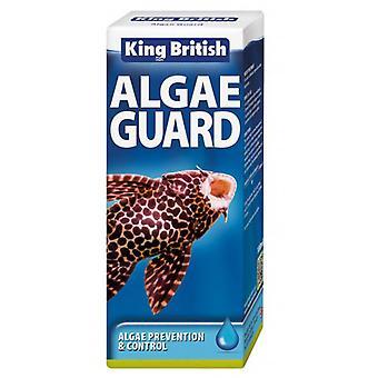 Koning Britse Aquarium algen bewaken 100ml (pak van 3)