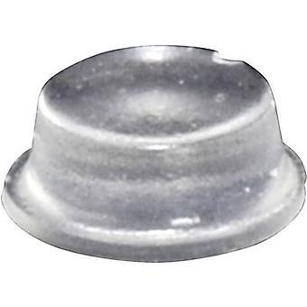 TOOLCRAFT PD2104C pé circular, auto-adesivo transparente (Ø x H) 10 x 4 mm 1 computador (es)