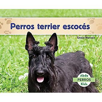 Perros Terrier Escocés (Scottish Terriers) by Grace Hansen - 97816240