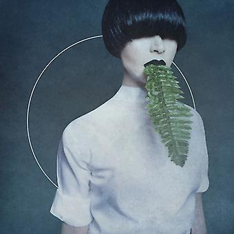 Kangding Ray - importación USA Cory Arcane [CD]