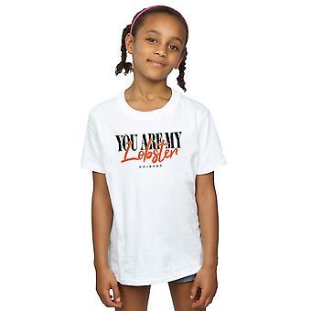 Venner jenter hummer sjelefrender t-skjorte