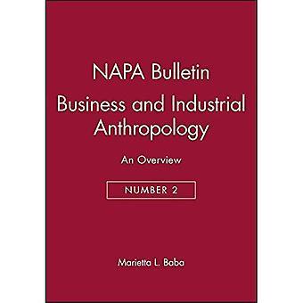 Wirtschaft und Industrie Anthropologie: eine Übersicht (NAPA Bulletin)