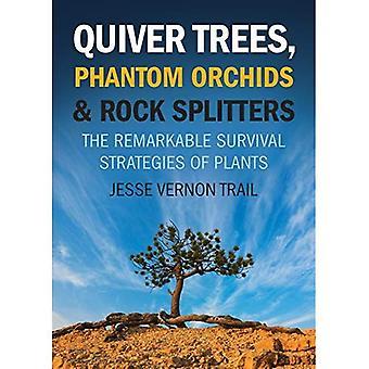 Koger träd, Phantom orkidéer och Rock Splitters: de anmärkningsvärda överlevnadsstrategier av växter