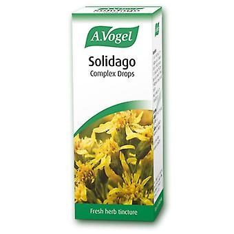 A.Vogel Solidago Complex 50ml