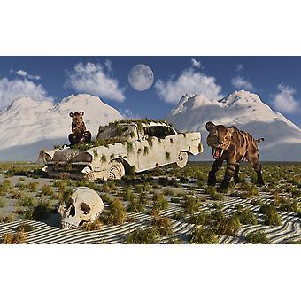 Ett par nyfikna Sabeltandade tigrar stöter på 1950-talet amerikanska Chevrolet under pleistocen ålder affisch Skriv ut