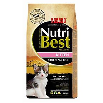 Picart NutriBest Cat Kitten (Cats , Cat Food , Dry Food)
