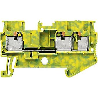 Push-In double level terminal PIT-PE PT 2,5-TWIN-PE Phoenix Contact Gree
