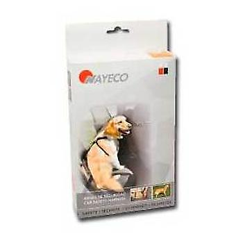 Nayeco Dog safety harness drive XL (Dogs , Transport & Travel , Travel & Car Accessories)