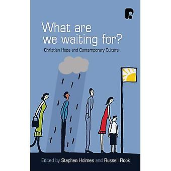 What are we Waiting For? Christian Hope and Contemporary Culture