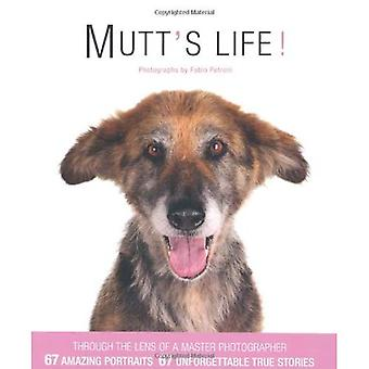 Mutt's Life!
