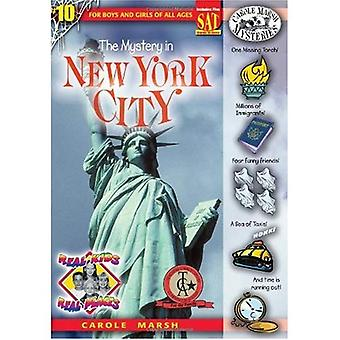The Mystery in New York City (Real Kids, Real Places (Hardcover))