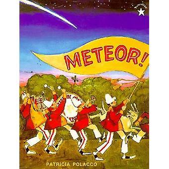 Meteor by Patricia Polacco - 9780698114104 Book