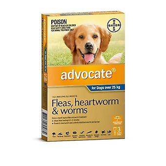 Advocate 3 Pack X Large Dogs over 25kg